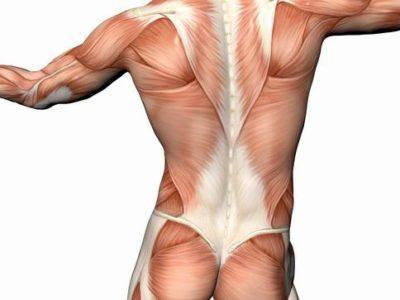 Подергивание мышц
