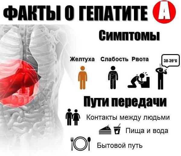 Факты о гепатите А