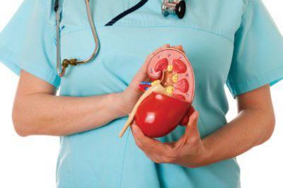 Диагностика болезней почек