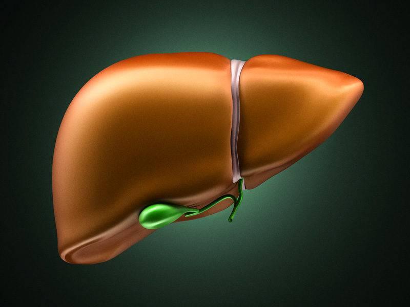 liver1