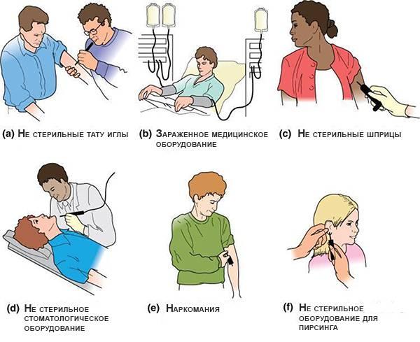 Пути передачи гепатита B