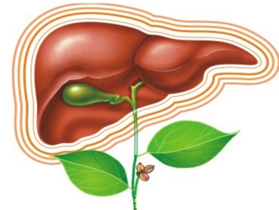 Антибиотики при гепатите с