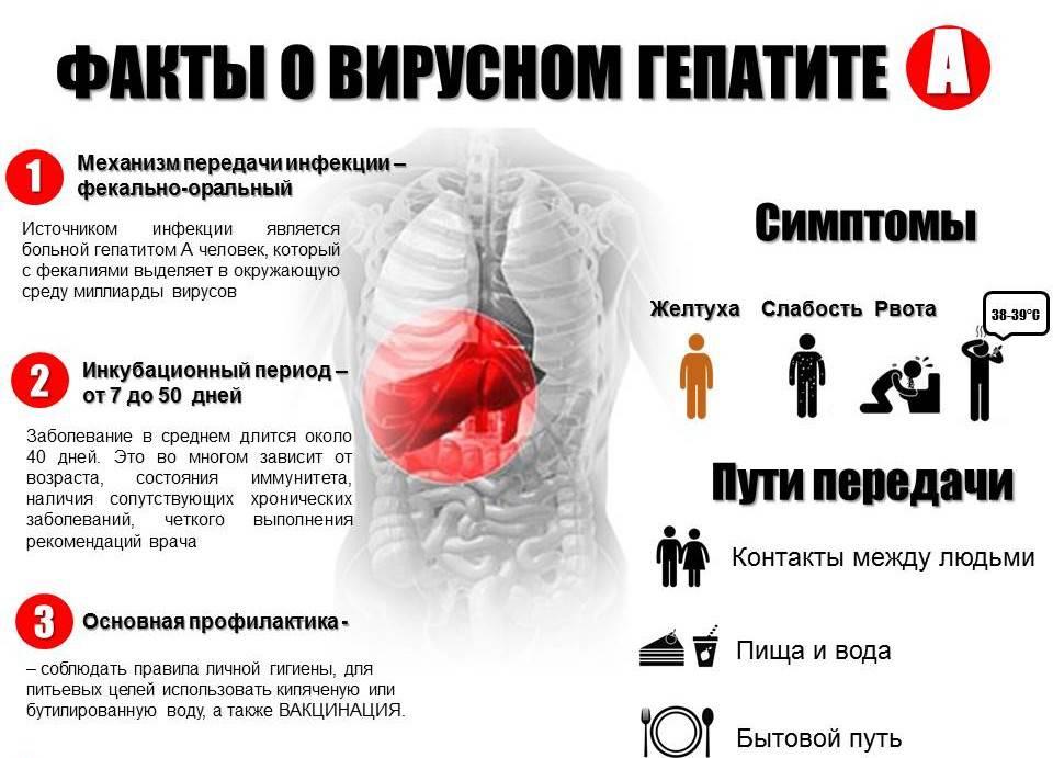 Особенности вирусного гепатита A