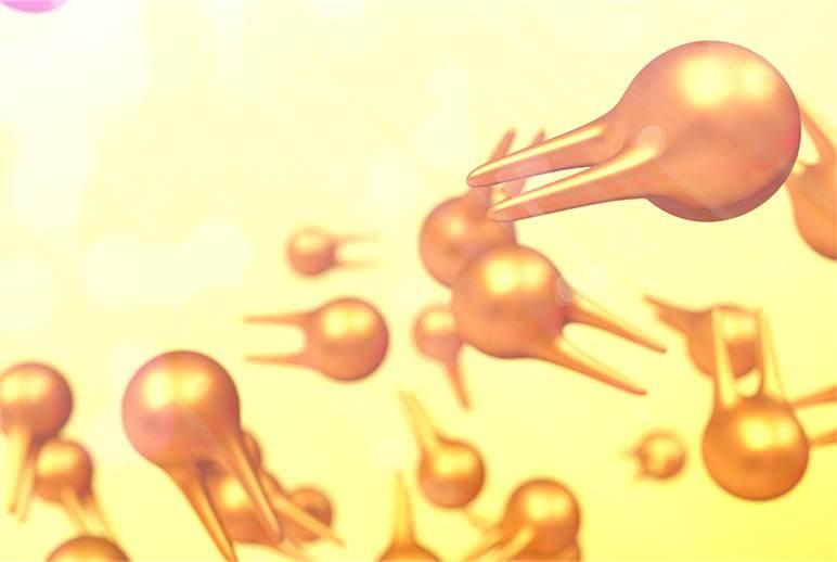 препараты от паразитов широкого спектра действия отзывы