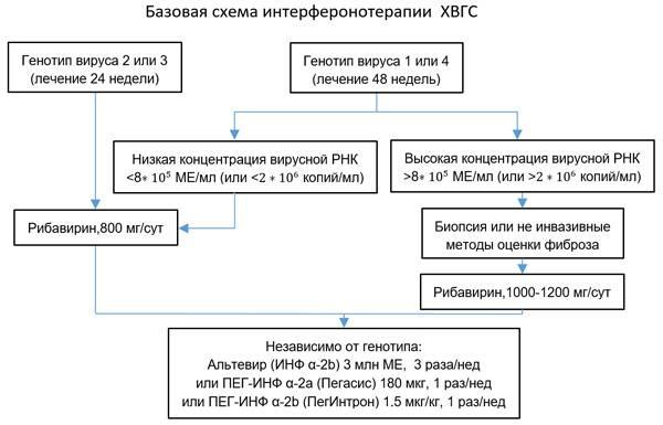 Схема лечения гепатита С интерфероном