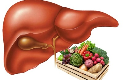 Орган и рацион пищи