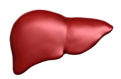 Пример органа