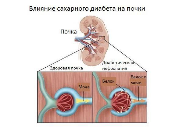 Противозачаточный препарат белара предназначен для ежедневного приема внутрь и относится к средствам регулярной гормональной контрацепции.