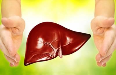 Здоровый орган